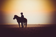 Lone raider (adiyatanan) Tags: lone rider horse ride amimal silhouette coxsbazar landscape mystorious adiyatanan