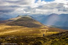 Lone Walker on Great Borne, Ennerdale, Cumbria