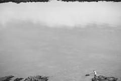 Al pedreo (Jaime GF) Tags: bn bw coast costa rocks rocas sea mar luanco gozn asturias spain nikon d40
