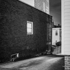 Window, Highland Ave., Somerville (Eric Haynes Photography) Tags: 120 2016 400 6x6 bw boston erichaynes film massachusetts mediumformat newengland rit somerville unitedstatesofamerica ally blackwhite blackandwhite erichaynescom hasselblad hp5 ilford night noir september square unitedstates