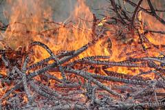 Fire! (r.j.scott) Tags: fire bonfire flames wood burn charred logs sticks