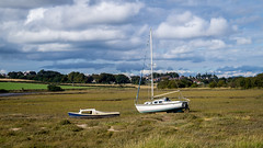 Tarka and friend at low tide - Alnmouth (tattie62) Tags: boats river alnmouth northumberland