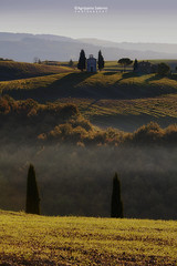 Vitaleta chapel in morning light (Agrippino Salerno) Tags: valdorcia tuscany italy vitaletachapel fog mist cypress goldenhour sunrise morning light shadow sky colors travel trees green agrippinosalerno canon manfrotto beautiful sanquiricodorcia pienza