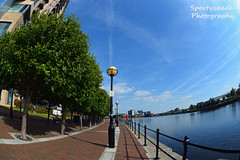 Salford Quays Waterfront (jonnywalker) Tags: salfordquays mediacityuk manchester salford quays lowryoutletmall waterfront trees apartments footbridge greatermanchester manchestershipcanal fisheye