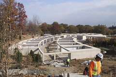 161116-OI229-A-010 (norfolkdistrict) Tags: arlingtonnationalcemetery anc millenniumproject construction arlington expansion milcon burial internment inurnment columbarium trees