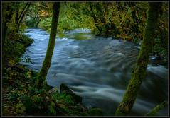 Dusk on Chambers Creek (Ernie Misner) Tags: chamberscreek tacomawashington creek river bluehour autumn erniemisner nikon d800 nik lightroom capturenx2 f8andbeinthebluehour