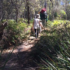 Wineglass Bay. Walk.