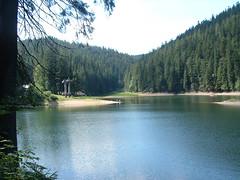 Szinevri-t (ossian71) Tags: ukrajna ukraine krptalja szinevr krptok carpathians vzpart water tjkp landscape termszet nature t lake