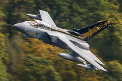 ZA548 (benstaceyphotography) Tags: raf panavia tornado gr4 za548 special 31 sqn squadron 31sqn goldstars royal air force marham autumn fall nikon military aviation fast jet sortie training motionblur speed panning
