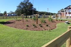 Georgia Visitor Information Center, Lowndes County grape arbors (MJRGoblin) Tags: lowndescounty 2016 lakepark georgia