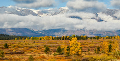 Grand Teton National Park (nebulous 1) Tags: grandtetonnationalpark grandtetonnp gtnp wyoming autumn clouds landscape nature water grass nikon nebulous1 glene