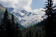 Jackson Glacier Overlook, Glacier National Park (synaesthesia24) Tags: landscape mountains trees evergreens glacier alpine jacksonglacier glaciernationalpark rockymountains rockies montana nature summer nikon d810 zeiss carlzeiss sonnar135 zf2 aposonnart2135 apo