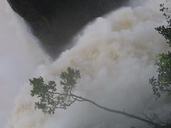 World Famous Jog Falls Photography By CHINMAYA M.RAO Set-1 (141)