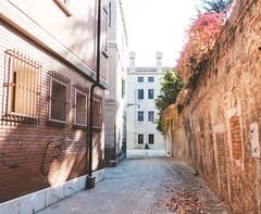 Autunno a Venezia (Brunella Pastore) Tags: venezia venice autumn autunno foglie relax travel viaggio