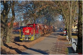 Emlichheim  |  29/11/2016