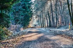Spaziergang an Silvester