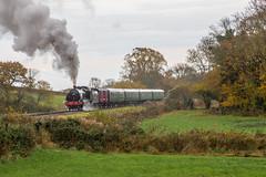 31806 Swanage Railway (4827) (PaulBrysn) Tags: timelineevents swanage 31806