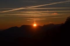 2.12.16. Es war Toll. (dreistrahler) Tags: luchs baselland eap swiss airshows zoobasel langeerlen zrh natur hunter fcbasel fasnacht blche