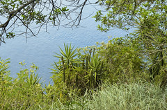 Natural window II (S.O Fotografa) Tags: 2014 altamar brasil crucero msc viaje pandeazcar rodejaneiro sofotografa