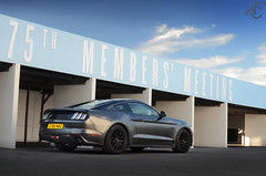 Out Of Exile (AdamC3046) Tags: ford mustang goodwood teddy bear run car cars muscle 2016