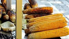 Grilled Corn on the Cob - Fine and easy Cooking.. (nyomee wallen) Tags: grilledcornonthecobfineandeasycooking grilledcornonthecob fine easyjob sweet sweetcorn cob