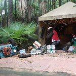 Walt Disney World - Jingle Cruise thumbnail