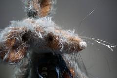 Mekare Bears Phinias Mouse (mekare_nl) Tags: mekare bears mekarebears mouse mohair art