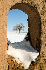 Welcome to Winter (Esmaeel Bagherian) Tags: زمستان اسماعیلباقریان برف پنجره قاب ایران درخت esmaeelbagherian winter frame snow tree iran