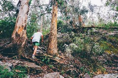 Cerro del Toro (hernancca) Tags: landscapes hernancca uruguay nature trekking trees sony