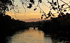 un tramonto incorniciato (silvia07(very busy)) Tags: tramonto sunset platani planetree lungotevere foglie leaves nuvole clouds