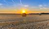 summertime (Urs Walesch) Tags: landscape field summer strawbale straw sun sunset sky nature germany