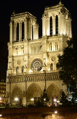 Paris - Notre-Dame de Paris (cnmark) Tags: light paris france architecture night cathedral historic cathdrale pont notredamedeparis petit ledelacit allrightsreserved