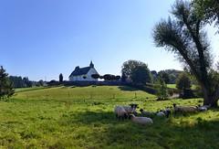 Wiesbaum in der Eifel - on Explore Oct 13, 2014 # 403 (mama knipst!) Tags: church kirche eifel église wiesbaum