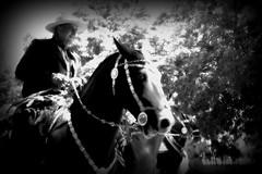 Y zarco del la'o del lazo (Eduardo Amorim) Tags: horse southamerica argentina criollo caballo cheval pferde cavallo cavalo gauchos pferd pampa riendas apero gaucho cavall 馬 américadosul platería gaúcho amériquedusud provinciadebuenosaires лошадь gaúchos 马 sudamérica sanantoniodeareco suramérica américadelsur areco südamerika crioulo caballoscriollos criollos حصان pilchas pilchasgauchas pampaargentina americadelsud plateríacriolla crioulos cavalocrioulo americameridionale caballocriollo rédeas eduardoamorim cavaloscrioulos pampaargentino