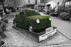 """Bush Car • <a style=""""font-size:0.8em;"""" href=""""http://www.flickr.com/photos/32236014@N07/15156907104/"""" target=""""_blank"""">View on Flickr</a>"""