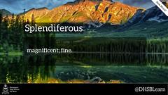 "splendiferous • <a style=""font-size:0.8em;"" href=""https://www.flickr.com/photos/128300742@N07/15167354264/"" target=""_blank"">View on Flickr</a>"