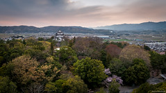 140412-1652-Ueno Park, Iga (carloshonda) Tags:  4k 3840    uhd      ultrahd  carloshonda  3840px