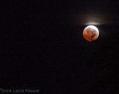 10-8-2014 Blood Moon Lunar Eclipse 012 (lezlievachon) Tags: