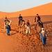 Sunrise Dunes of Merzouga_8270