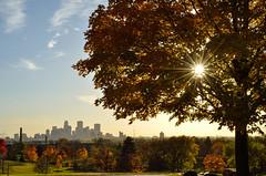 Autumn 2014 (herecomesanothersongaboutmexico) Tags: autumn sun tree fallcolors horizon sunflare minneapolismn hillsidecemetery