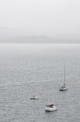 Misty Eden (dlerps) Tags: ocean sea mist water fog pier dock haze sailing harbour sony foggy sigma australia wharf catamaran newsouthwales eden snugcove seaport sailingboat sigmaapo70200mmf28exdghsm lerps sonyalphadslr twofoldbay sigmaapoteleconverter2xdg sonyalphaa77v daniellerps