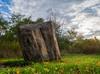 Memorial Rock (bill.d) Tags: park morning autumn usa fall rock landscape memorial michigan unitedstatesofamerica kalamazoo preserve wmu hdr westernmichiganuniversity photomatix kalamazoocounty asylumlake