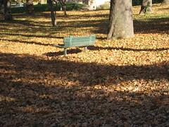 Empty Seat and Fall (laedri52) Tags: park nebraska empty seat omaha hazan yapraklar sonbahar gz bo oturak