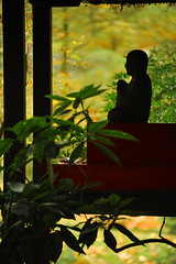 Japanse-tuin-Clingendael-Boeddha (Don Pedro de Carrion de los Condes !) Tags: silhouette japan japanesegarden herfst blad zen tuin vorm waterdruppels uitje donpedro kleur clingendael druppels bladeren japansetuin landgoedclingendael gemeentedenhaag