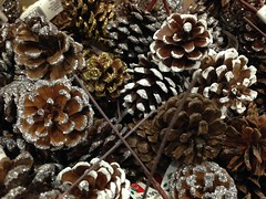 Fake pinecones with glitter - At Michael's (m01229) Tags: glitter store crafts pinecones crystalmn michaelscrafts