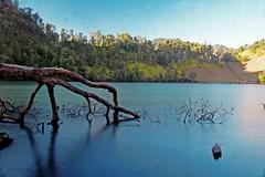 IMG_1195 (hoki.peace) Tags: camping lake indonesia semeru landscaper mountsemeru gunungsemeru ranukumbolo visitindonesia wisataindonesia campvibes