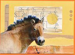344365  nifty neutral (CorgiFeet) Tags: horse collage beige postcard mailart neutral