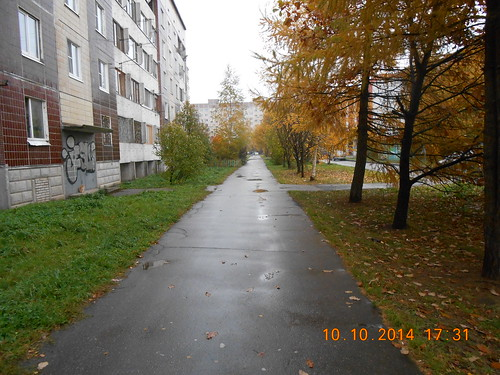 Осень 2014  во Всеволожске ©  volkovsp