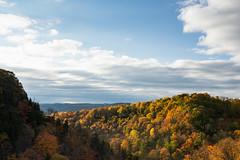 Dundas Valley Peaks (Explore Sept 20th 2014) (ozVADERzo) Tags: sky orange colour fall nature forest landscape nikon sigma dundas sigma1835mmf18