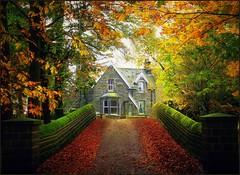 Autumn Swinsty, Yorkshire (robin denton) Tags: bridge autumn trees house leaves cottage autumnleaves autumnal